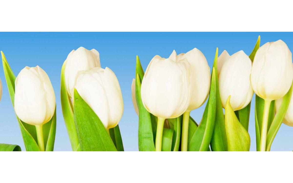 Подарить цветок что означает