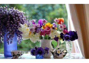 Вторая жизнь цветов. Продлеваем жизнь дорогих сердцу букетов