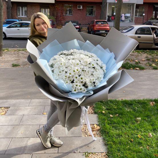 51 роза Илиос 60 см