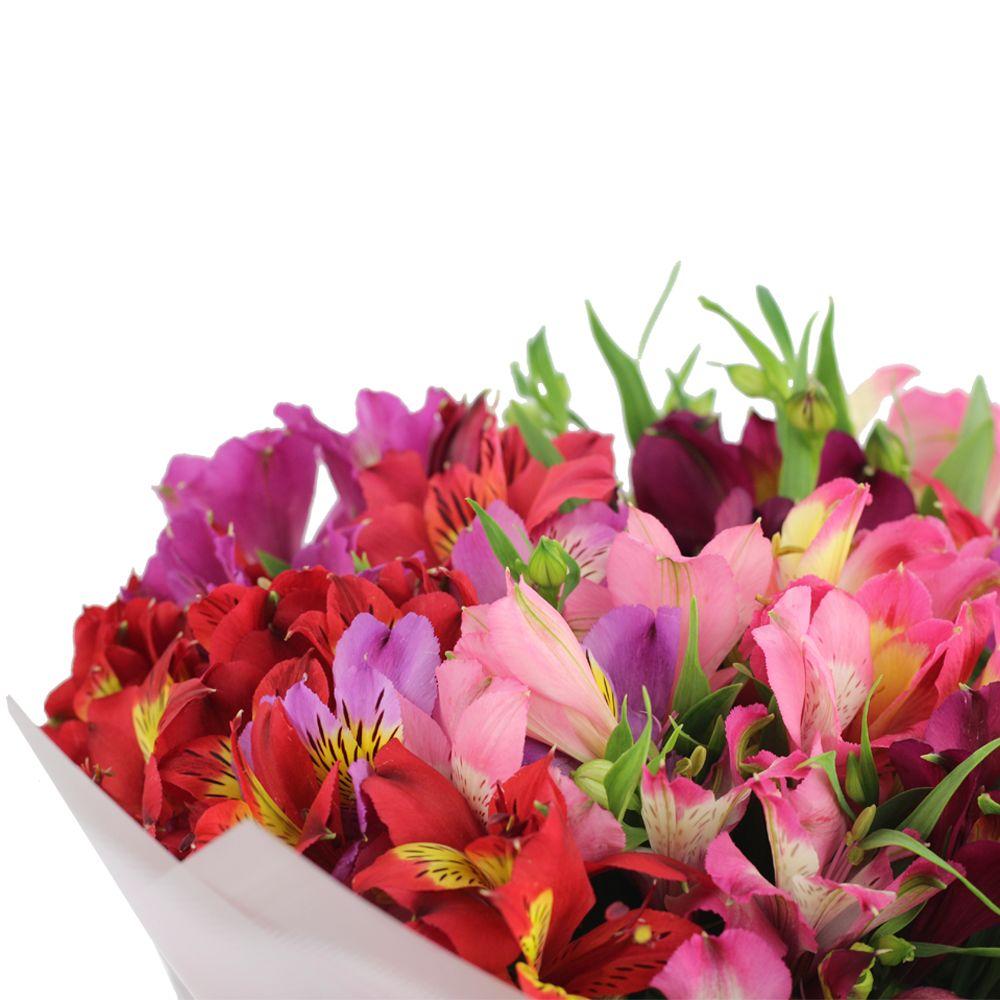 Заказать цветы флорина, оптом беларусь гвоздика