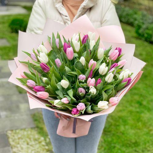 """Тюльпаны """"Поцелуй"""""""