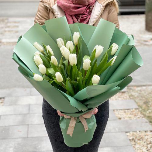 """Тюльпаны """"Интонация"""""""