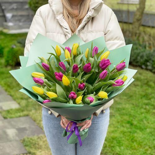 """Тюльпаны """"Константа"""""""