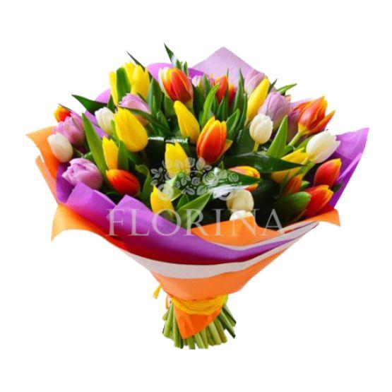 "Тюльпаны ""Яркие краски"""