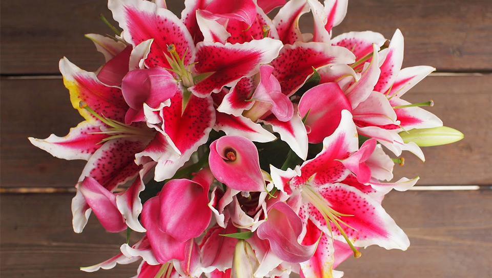 Картинки красивые букеты цветов на белом фоне