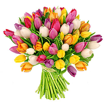 Огромные букеты цветов фото тюльпаны