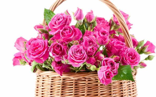Цветы на праздник Харьков